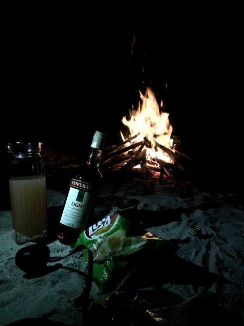 We capped off the night with some bonfire, good music, and a few glasses of alcohol.